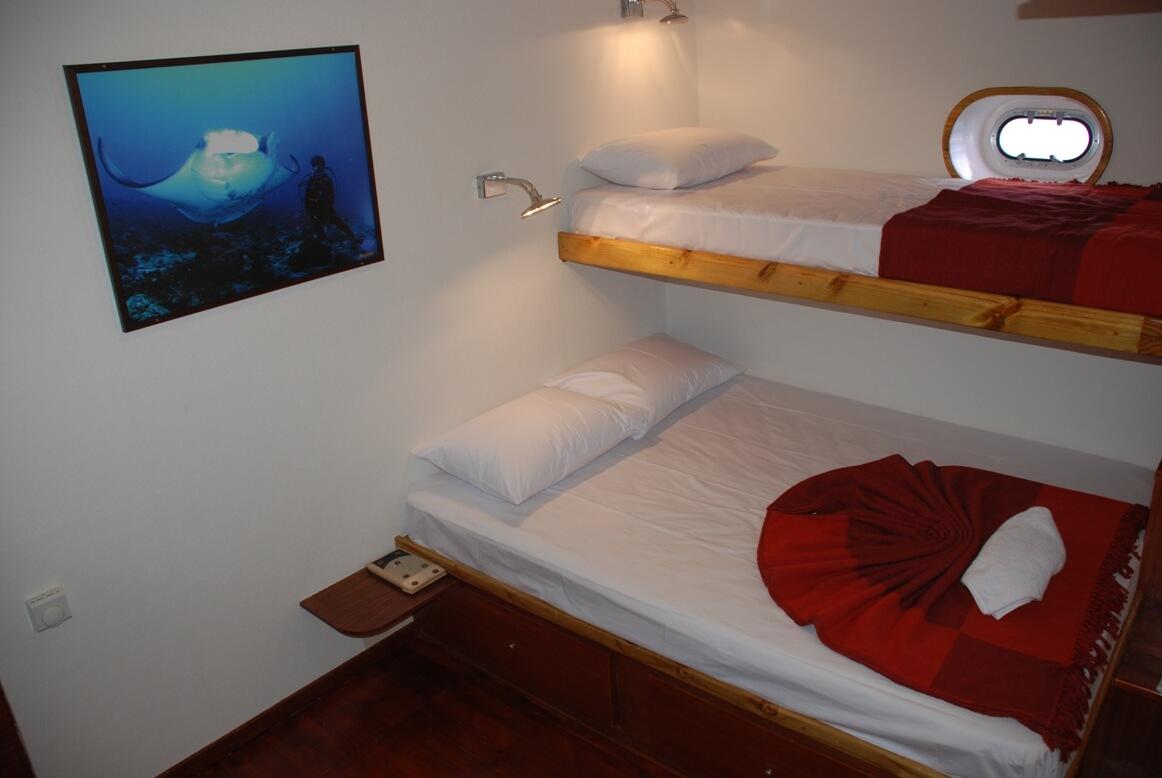 Carpe Diem's standard cabin